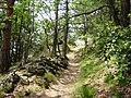 2008 0707 80540 Hiking in South Tyrol Naturns R0612.jpg