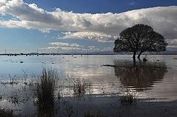 Χειμερινό τοπίο λίμνης βιστωνίδας