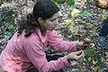 2012-09-29 Mushroom hunting.jpg