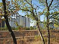 2012 - panoramio (359).jpg