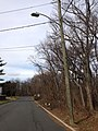 2014-12-30 12 51 04 Utility pole and a florescent street light along Hollowbrook Drive in Ewing, New Jersey.JPG