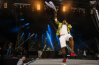 20140530 Dortmund RuhrRaggaeSummer 0437.jpg