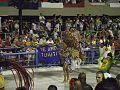 2015-02-13 - Império Serrano (6).jpg