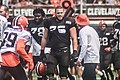 2016 Cleveland Browns Training Camp (28074809844).jpg