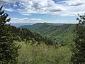 2017-05-17 14 24 23 View south-southeast from Newfound Gap within Great Smoky Mountains National Park, on the border of Sevier County, Tennessee and Swain County, North Carolina.jpg