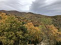 2019-10-26 12 51 32 View south across Devrick Hollow on the west side of Shenandoah Mountain from the Highland Turnpike (U.S. Route 250) in Highland County, Virginia.jpg
