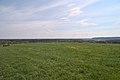 20210417 Naturschutzgebiet Wolferskopf 03.jpg