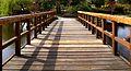 205viki Park szczytnicki. Foto Barbara Maliszewska.jpg