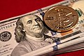 25 BTC Casascius Gold Round with $10k in fiat currency by Gage Skidmore.jpg