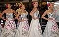 27 Dresses at 27 Dresses Premiere 3.jpg