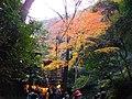 2 Minookōen, Minoo-shi, Ōsaka-fu 562-0002, Japan - panoramio (22).jpg
