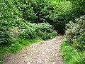 2km to Woodside - geograph.org.uk - 2531898.jpg