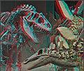 3D IMG 1186= (11354010573).jpg
