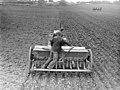 7268 Canterbury Agricultural College farm.jpg
