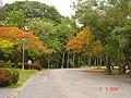 AIT, Thailand, 12120 - panoramio.jpg