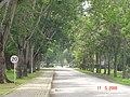 AIT - panoramio - Seksan Phonsuwan (6).jpg