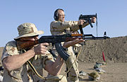 AKM and MP5K