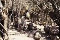 ASC Leiden - Coutinho Collection - doos-1 20 - Trip to Senegalese border from Candjambary, Guinea-Bissau - Woman pounding rice in village - 1974.tif