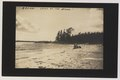 A Beach, Lake-of-the-Woods (HS85-10-26191) original.tif