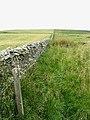 A drystane dyke running up to Hoggfield Hill - geograph.org.uk - 545897.jpg