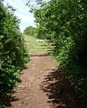 A steep track to a field - geograph.org.uk - 1328336.jpg