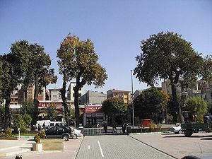 Iğdır Province - A street in Iğdır City