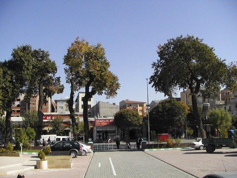 A view of Igdir city centre