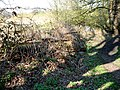 Abandoned Roller - geograph.org.uk - 384628.jpg