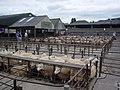Abergavenny Livestock Mart - geograph.org.uk - 1445757.jpg