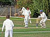 Abridge CC v Hadley Wood Green Sports CC at Abridge, Essex, England. Canon 79.jpg