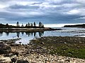 Acadia National Park (36ea497c-bea4-4d25-9e73-0f3a27662c6c).jpg