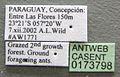 Acromyrmex fracticornis casent0173798 label 1.jpg