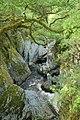 Afon Conwy close to Conwy Falls. - geograph.org.uk - 798735.jpg