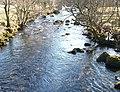 Afon Dwyfor below the footbridge - geograph.org.uk - 1763268.jpg