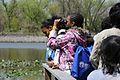 After the contest, Philadelphia school students take part in an educational birdwalk with local Audubon birders on Tinicum marsh. (5686737743).jpg