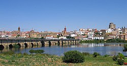 Panoramica of Alba de Tormes and the bridge over the river Tormes