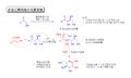 Aldol-33-FT.png