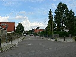 Tulpenweg in Berlin