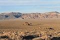 America's Solar Highway - panoramio (80).jpg