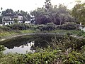Ancestral House of Netaji Subhas Chandra Bose - Pond 01.jpg