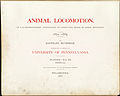 Animal Locomotion III Title page (Boston Public Library).jpg