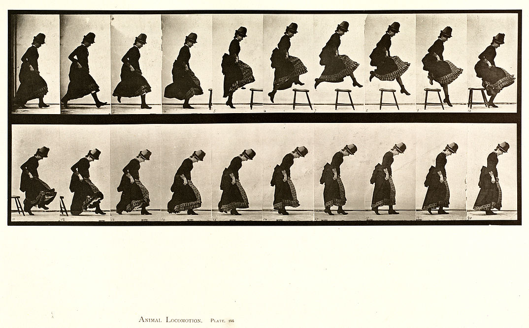 Animal locomotion. Plate 156 (Boston Public Library).jpg