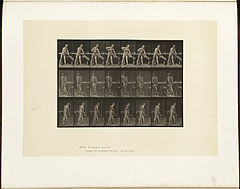 Animal locomotion. Plate 380 (Boston Public Library).jpg