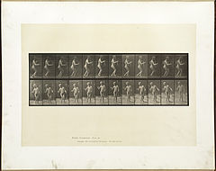 Animal locomotion. Plate 561 (Boston Public Library).jpg