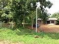 Anuradhapura, Sri Lanka - panoramio (8).jpg