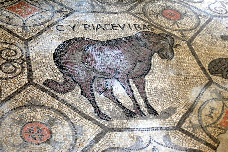 Мозаики в соборе Аквилеи