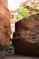 Aravaipa Canyon Wilderness (9415016192).jpg