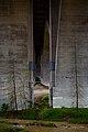 Area under the Colorado Street Bridge in Pasadena, Los Angeles, California. 30.jpg
