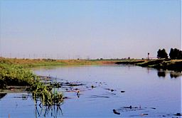 Aresa river near Lyuban 2006.jpg