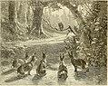 Art in America; a critical and historical sketch (1880) (14782922145).jpg